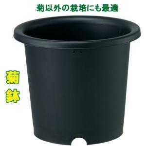 菊鉢8号/ポット・鉢|yorozuya-souko