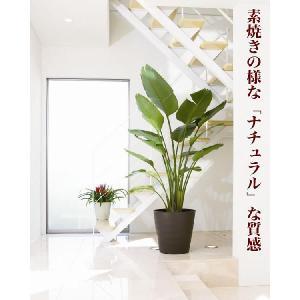 フレグラーポット 36型/ポット・鉢 yorozuya-souko 06