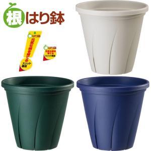 植木鉢 根はり鉢 6号 プラ鉢 yorozuya-souko