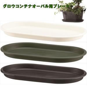 受皿 グロウプレートオーバル25型|yorozuya-souko