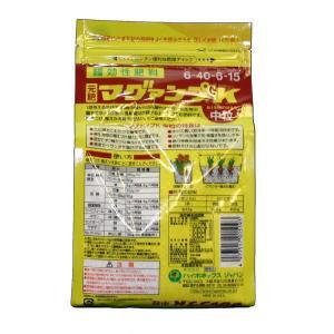 ハイポネックスマグァンプK中粒600g|yorozuya-souko|02
