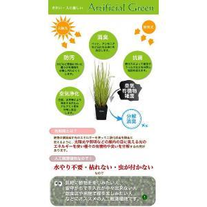 光触媒人工観葉植物SS レッドグラス鉢カバー付|yorozuya-souko|03