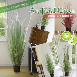 光触媒人工観葉植物SS レッドグラス鉢カバー付|yorozuya-souko|04