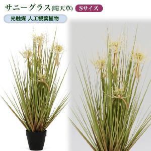 光触媒人工観葉植物S サニーグラス(晴天草)|yorozuya-souko
