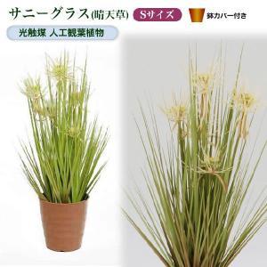 光触媒人工観葉植物S サニーグラス(晴天草)鉢カバー付|yorozuya-souko