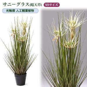 光触媒人工観葉植物SS サニーグラス(晴天草)|yorozuya-souko