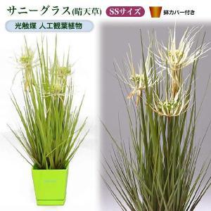 光触媒人工観葉植物SS サニーグラス(晴天草)鉢カバー付|yorozuya-souko