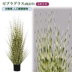 光触媒人工観葉植物L ゼブラグラス(斑馬草)|yorozuya-souko