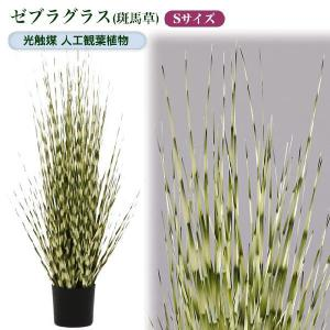 光触媒人工観葉植物S ゼブラグラス(斑馬草)|yorozuya-souko