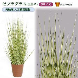 光触媒人工観葉植物S ゼブラグラス(斑馬草)鉢カバー付|yorozuya-souko