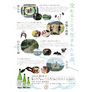 特別純米酒 關の葵 交  (せきのあいおこう) 1本 300ml|yorozuyasan|03
