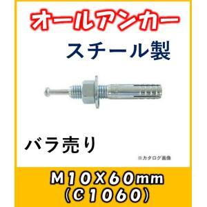 サンコー オールアンカー Cタイプ スチール製 C-1060バラ売り|yorozuyaseybey