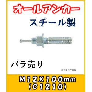 サンコー オールアンカー Cタイプ スチール製 C-1210バラ売り|yorozuyaseybey