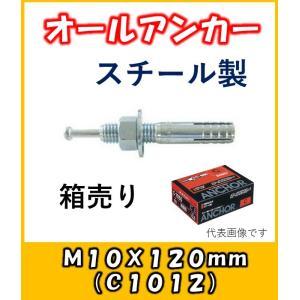 サンコー オールアンカー Cタイプ スチール製 C-1012 50本入り1箱|yorozuyaseybey