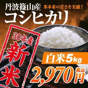 28年新米 コシヒカリ 5kg 丹波篠山産