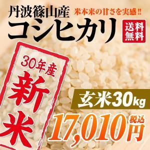 29年新米 コシヒカリ(玄米) 30kg 丹波篠山産