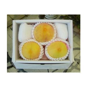 旬の高級フルーツギフト岡山県産 黄桃(黄金桃)3個入