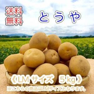 減農薬栽培 じゃがいも < とうや >  北海道産 じゃがいも  ( LM規格  5 kg)≪ 農家...