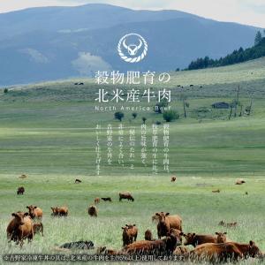 吉野家 冷凍牛丼の具並盛135g×28袋セット お取り寄せ グルメ 冷凍 食品|yoshinoya-shop|07