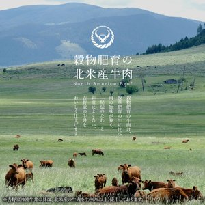 吉野家 冷凍牛丼の具並盛135g×20袋セット お取り寄せ グルメ 冷凍 食品|yoshinoya-shop|07