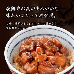 吉野家 新大人気セット (牛丼・豚丼・牛焼肉・親子丼・焼鶏・紅生姜)|yoshinoya-shop|11