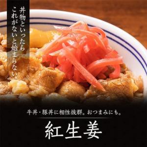 吉野家 新大人気セット (牛丼・豚丼・牛焼肉・親子丼・焼鶏・紅生姜)|yoshinoya-shop|14