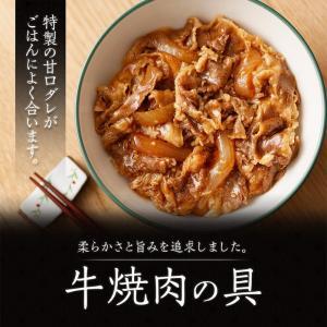 吉野家 新大人気セット (牛丼・豚丼・牛焼肉・親子丼・焼鶏・紅生姜)|yoshinoya-shop|09