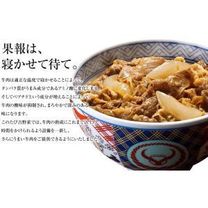 吉野家 冷凍牛丼の具 並盛 5袋お試しセット【ポイント消化にぴったり】|yoshinoya-shop|03
