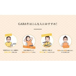 吉野家 冷凍GABA牛135g×5袋 ギャバ入り牛丼の具 減塩 健康 お試し yoshinoya-shop 02