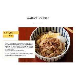 吉野家 冷凍GABA牛135g×5袋 ギャバ入り牛丼の具 減塩 健康 お試し yoshinoya-shop 03