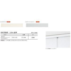 TOSOピクチャーレールS-1 工事用セット0.5m |yoshioka|02