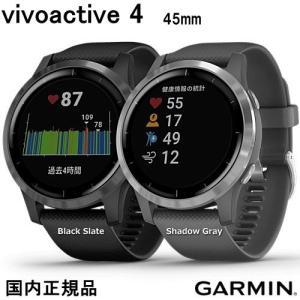 ガーミン ヴィヴォアクティブ4  vivoactive4  45mm Black Slate (01...