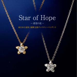 2014年 ラザールダイヤモンド Star of Hope 希望の星 ダイヤモンドネックレス 0.15ct K18WG or K18YG 〜希望の星〜 (限定品)|yosii-bungu