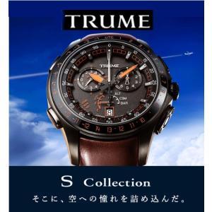 エプソン TRUME TR-MB7007 チタン・レザーバンド   (メタルバンド付属) ソーラー腕...