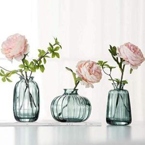 花瓶花器 北欧 ガラス 高級感 フラワーベース - ガラスベース ガラスボトル +3つセット 小 おしゃれアレンジ インテリア 水栽培 生け|you-mart-smile