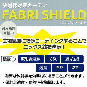 放射能対策 カーテン ファブリシールド アネシスAB2034 (A) 幅400cm×丈100cm 以内でサイズオーダー|youai|03