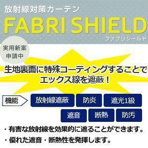 放射能対策 カーテン ファブリシールド アネシスAB2034 (A) 幅600cm×丈120cm 以内でサイズオーダー|youai|03