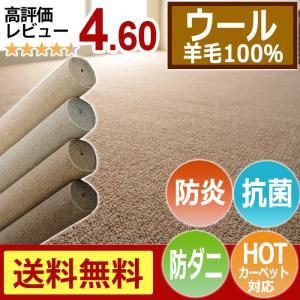 カーペット 3畳 3帖 防ダニカーペット ウールカーペット ウール100% 抗菌 約176×261cm 江戸間 絨毯 日本製 リビング ダイニング オペラ(グランデ) (N)|youai