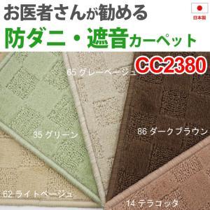 防ダニカーペット4畳半カーペット 四畳半 4畳半 4.5畳 4.5帖 261×261cm ホットカーペット対応 CC2380(A)|youai