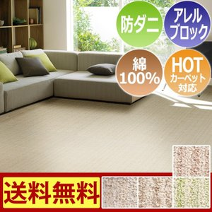 綿100%ラグカ−ペット コットンボーダー (S) 3畳 約176×261cm 半額以下|youai