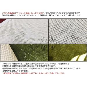 玄関マット モンステラ (Y) ブラウン 約50cm×80cm 半額以下|youai|04