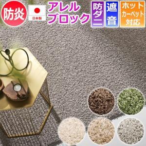 ラグカーペット スミトロンニューツイスティ (S) 四角形 約200×250cm 日本製 半額以下|youai