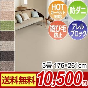 カーペット 3畳 176×261cm ラグマット ソフトイデア(S) 絨毯 ジュータン カーペット 日本製 激安|youai
