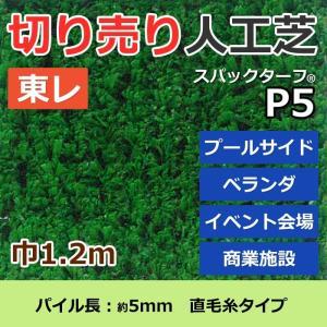 スパックターフ 人工芝 約1.2m幅 切り売り レギュラーシリーズ P5 (R) 東レ 引っ越し 新生活|youai