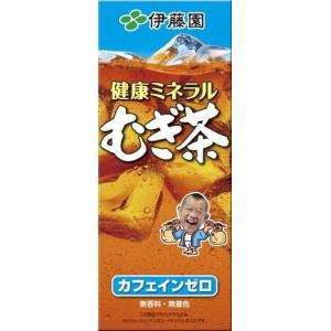 麦茶 むぎ茶 伊藤園 健康ミネラルむぎ茶 紙パック 250ml×24本×2ケース
