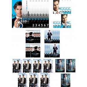 【DVDケース無】全 巻 中古DVD ホワイトカラー(41枚セット)シーズン 1 知的 犯罪 ファイル、2、3、4、5、ファイナル レンタル落|youing-azekari