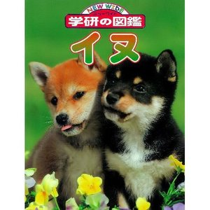 イヌ 「ニューワイド学研の図鑑」|youkenshop