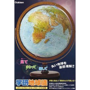 学研 地球儀|youkenshop|02