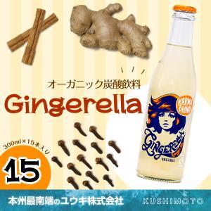 Gingerella(ジンジャエーラ)|youkico