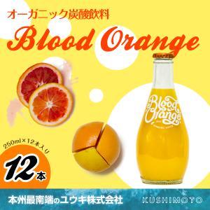 Blood Orange(ブラッドオレンジ)|youkico